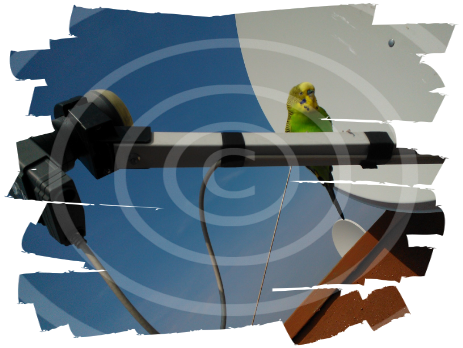 installazione antenne digitale terrestre napoli italie